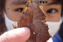 湘南自然誌 索引 2020.3.12更新版
